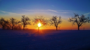 15.1.2013 Winter  (5)