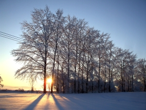 6.1. Winter 2010 045