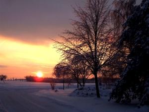 6.1. Winter 2010 100